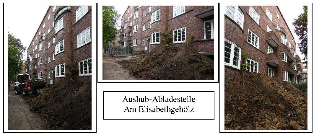 1 Am Elisabethgehölz